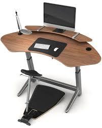 Ergonomic Standing Desk Height 12 Best Standing Desks Images On Pinterest Home Office Office