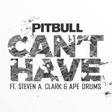 pitbull can u0027t have lyrics directlyrics