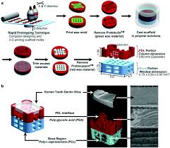 advances in polymeric materials for dental applications polymer