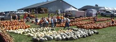 apple orchard illinois produce u pick apples pumpkins