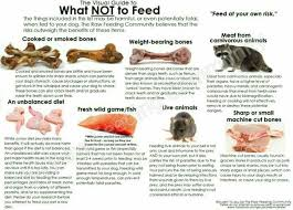 27 best raw feeding info images on pinterest charts puppies and