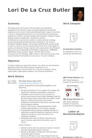information technology professional resume essay on the modification of clouds technical service rep resume