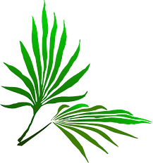 palm fronds for palm sunday palm sunday branch clip at clker vector clip online
