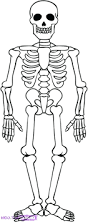 coloring pages skeleton color pages printable coloring for kids