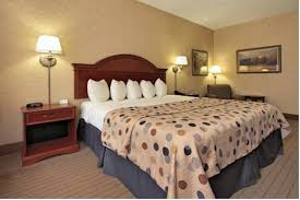 Comfort Inn Indianapolis In Comfort Inn Indianapolis In Carmel Hotel Booking Offers Reviews