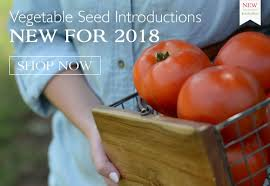 park seed vegetable seeds flower seeds plants bulbs trees and