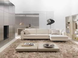 Grey Living Room Rug Living Room Living Room Beautiful Modern Light Grey Living Room