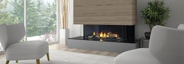 quality bbqs u0026 fireplaces from napoleon weber dcs saber u0026 more
