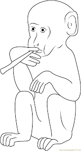 smoking monkey coloring page free monkey coloring pages