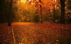 free fall wallpaper for computer autumn landscapes u2013 inspiro