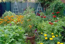 five ways to give your vegetable garden style