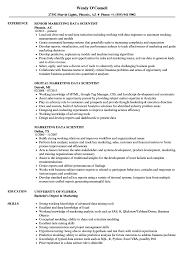 data scientist resume marketing data scientist resume sles velvet