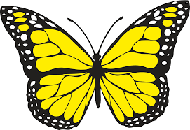 clipart butterfly 1 colour