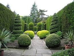 Decorative Trees In India Topiary Wikipedia