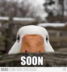Soon Meme - 1000 ideas about soon meme on pinterest meme pics funny