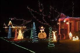 christmas lights in bellingham