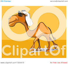 clipart of a cartoon arabian camel wearing sunglasses on an