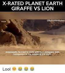Xrated Memes - x rated planet earth giraffe vs lion supposedly he tried to mate