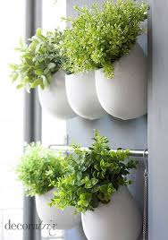 Kitchen Herb Garden Design Best 25 Hanging Herbs Ideas On Pinterest Herb Wall Indoor Wall