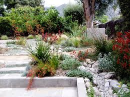 drought tolerant landscaping design u0026 install