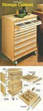 Tool Storage Cabinets Tool Storage Cabinet Plans Workshop Solutions Projects Tips And