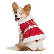 dog costumes shop small u0026 large dog costumes petsmart