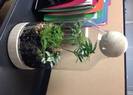 event details page terrarium greening your cube