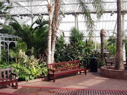 panoramio photo of glasgow winter gardens of the people s palace