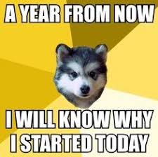 Courage Wolf Meme Generator - the very best of the courage wolf meme wolf meme meme and wolf