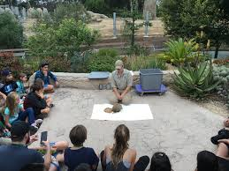 the wild life movie meeting the u201cstars u201d at the san diego zoo momsla