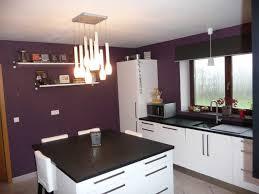 idee couleur cuisine impressionnant idee deco cuisine peinture et cuisine indogate