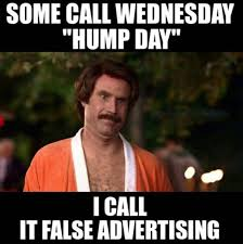 Hump Day Meme - happy wednesday 17 hilarious hump day memes to see you through to