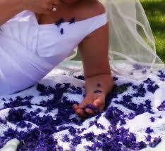 wedding confetti flowers purple larkspur wedfing