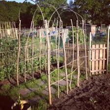 Backyard Botanical Complete Gardening System Backyard Botanical 8 U0027 X 8 U0027 Oasis Complete Gardening System Raised