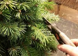 How To Trim A Real Christmas Tree - make a faux diy christmas tree with real branches hometalk