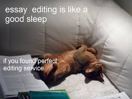 Picture Editor Meme - 5 tools for editing essays online free