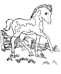 coloring pages printable for free horse coloring pages to print for free s race horse coloring pages
