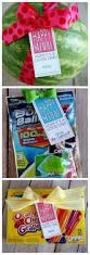 best 25 summer gifts ideas on pinterest summer gift baskets