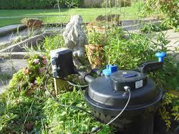 native pond plants uk pressurised pond filter what u0027s best for your garden pond