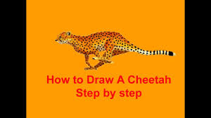 how to draw a cheetah step by step youtube