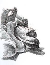 16 best pen and ink still life images on pinterest draw drawing