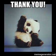 Thank You Meme - thank you cute baby panda meme generator