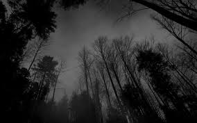 scary moon background dark scary forest wallpaper wallpapersafari