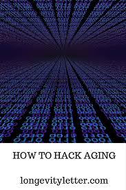 how to hack aging a guide for the indie scientist longevity letter