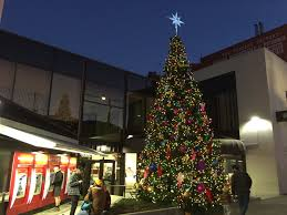 Christmas Tree Stop - christmas in the castro take a very merry walking tour hoodline