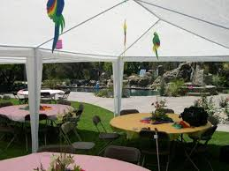12 X 20 Canopy Tent by Palm Springs Outdoor 10 X 20 Wedding Party Tent Gazebo Canopy With