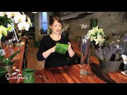 How To Arrange Flowers In A Tall Vase How To Arrange Flowers In A Small Vase Contemporary Youtube