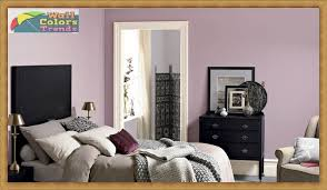 paint color of the year 2017 dulux wall paint colours with 2017 designs wall colors trends
