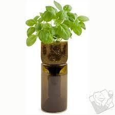 Indoor Herb Garden Kit Growbottle Indoor Herb Garden Kit Miscellaneous Brands