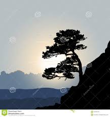 tree silhouette on a mountain background stock photo image 33948440